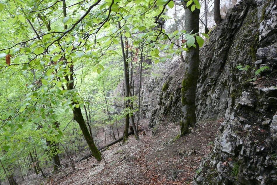 la montée à la grotte merveilleuse vue du haut
