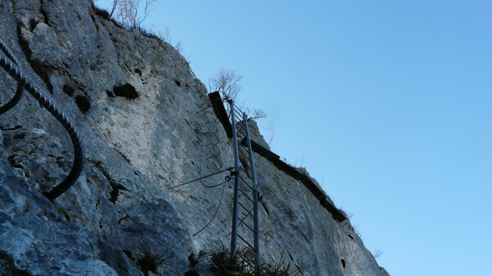 Primevère à Oreille d 'Ours au Cornillon, l' échelle inversée vue depuis la grotte