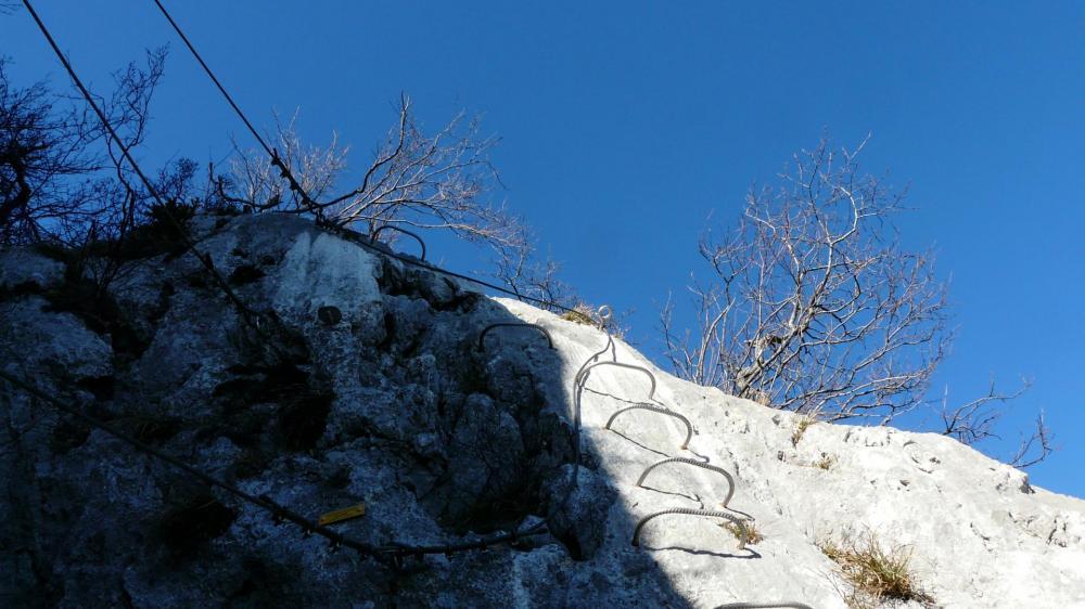 Les ponts de singe au dessus du passage de la grotte, Primevère à Oreille d'ours