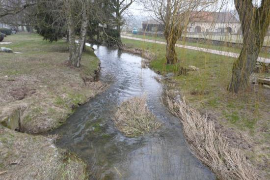 L' arofe à Aroffe (Vosges)