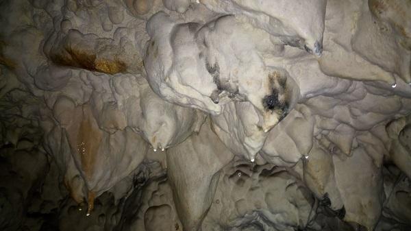 grotte du tunnel à Arbois
