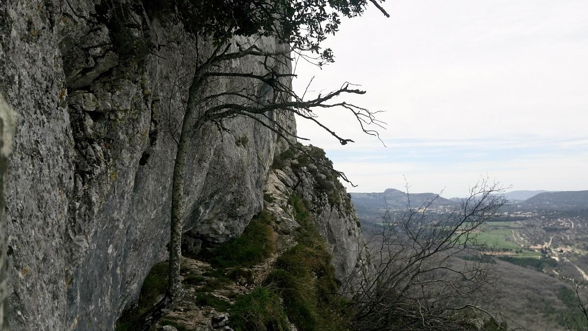Sentier en corniche du sentier Marcel Estrruch
