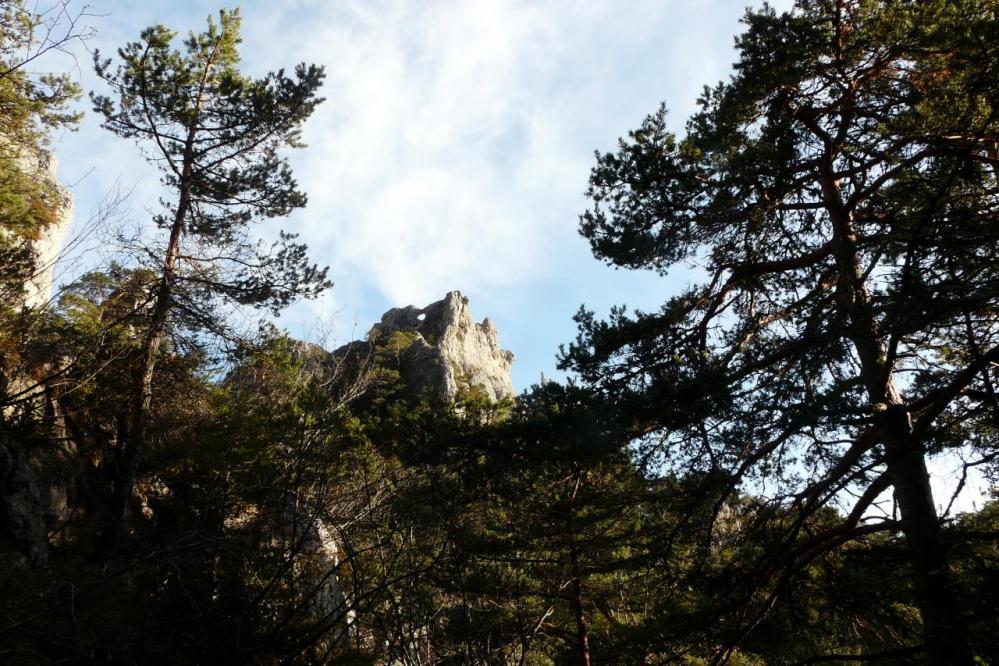 la lucarne, départ d' une tyrolienne