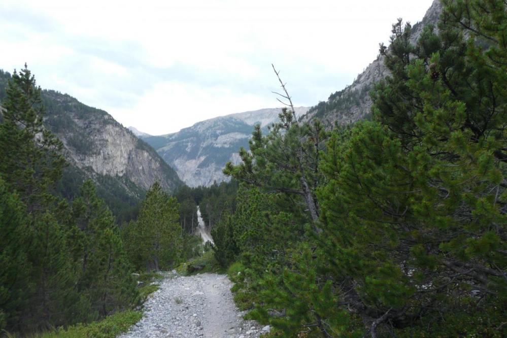 dans la descente du col en vue de la piste qui ramène à Plampinet