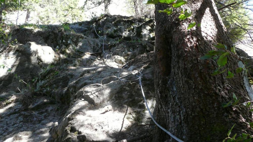 Départ de la via de Vaujany dans le sous bois après le pont de singe -voie des passerelles)