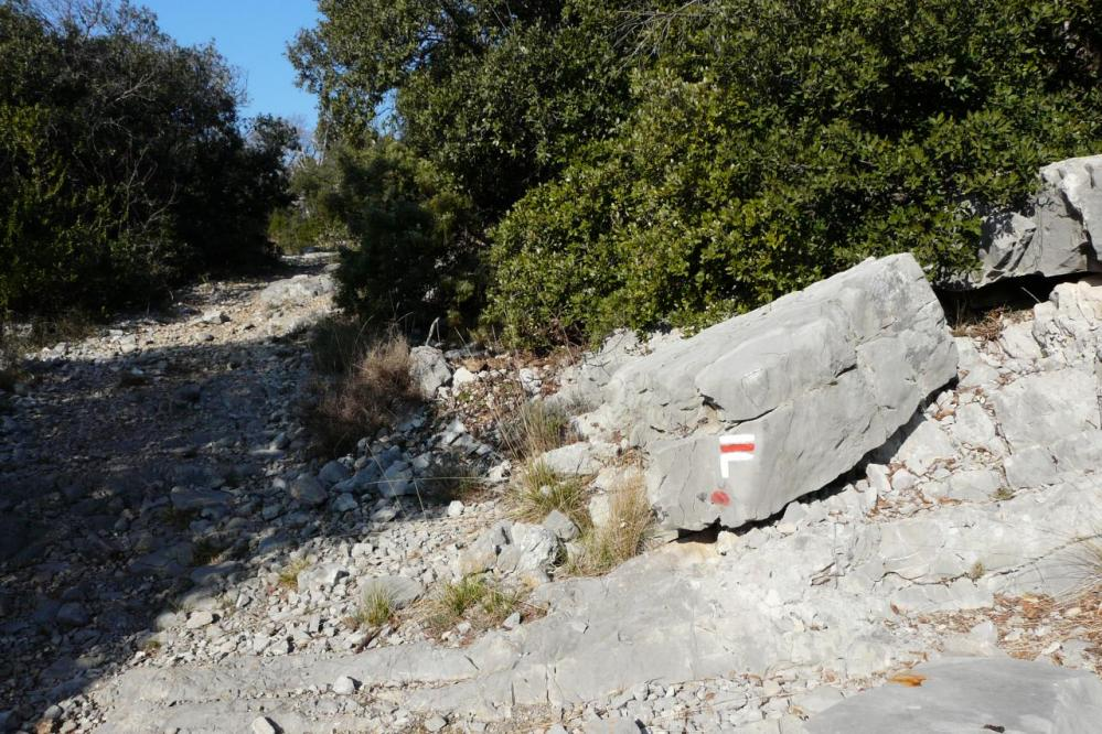 sentier de départ pic st Loup versant ouest au dessus de Cazevieille