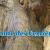 Spéléo grotte des Ferrières    Depuis col du Carri  Drôme